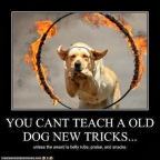 Can old dogs learn new tricks?