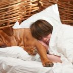 Should your dog sleep in bed beside you?