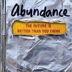 Have you read Abundance? – Part 2