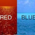 Have you found your blue ocean?